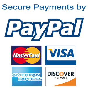 Secure Payment Website