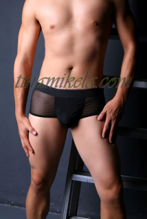 Men's Sheer Briefs